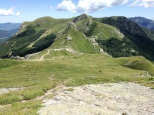 Monte Gomito - Agosto 2019